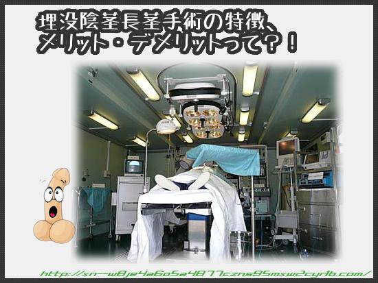 04_02_maibotu