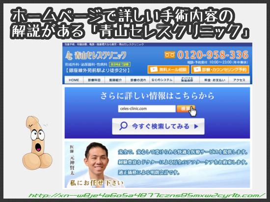 04_21_aoyama